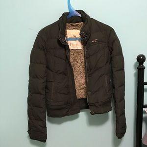 Hollister Puffy Jacket